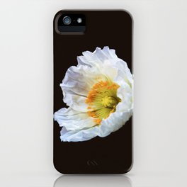 Papaver Nudicaule iPhone Case