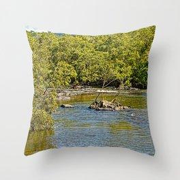 Beautiful river in the tropics Throw Pillow