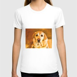Oh PLEASE give me Cookies! T-shirt