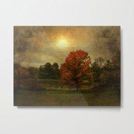 The Magic of Autumn Metal Print