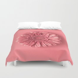 Pink daisy flower on pink background Duvet Cover