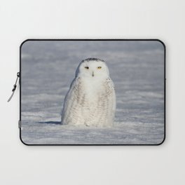 The Snow Queen Laptop Sleeve