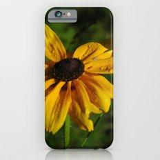 Black Eyed Susans iPhone 6 Slim Case