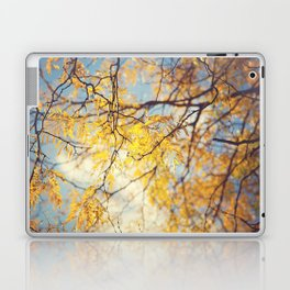 Gold Leaves and Blue Sky Laptop & iPad Skin