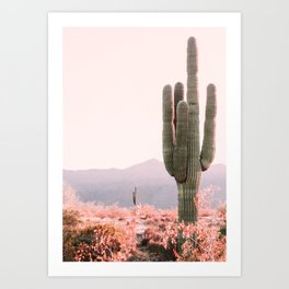 Vintage Cactus Art Print