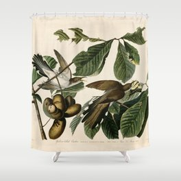 Yellow-billed Cuckoo, Birds of America by John James Audubon Shower Curtain