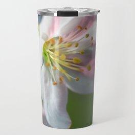 Apple Tree Blossoms In Spring Travel Mug