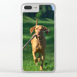 Vizsla Clear iPhone Case