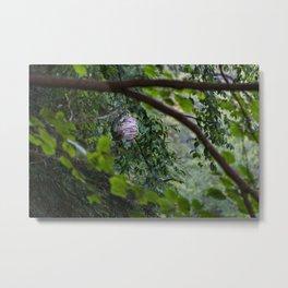 McConnells Mill - Wasp Hive Metal Print