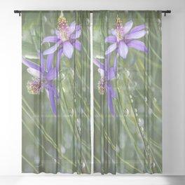 Meadow Dew Sheer Curtain