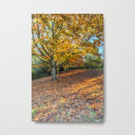 An English Autumn Metal Print