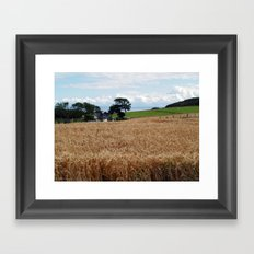 Fields of Barley Framed Art Print