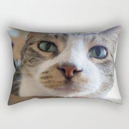 Kiko the Cat Rectangular Pillow