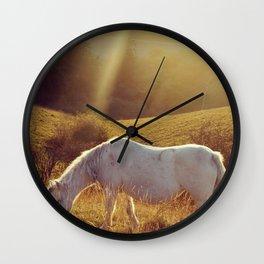 Pony grazing Wall Clock