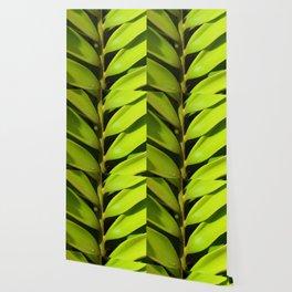 Vegetable balance - Green design Wallpaper