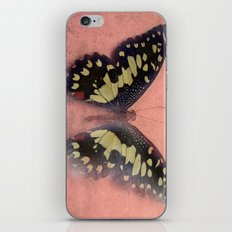Vintage Butterfly 3 iPhone & iPod Skin