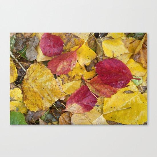 """Rain leaves"" Canvas Print"