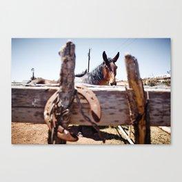 Horsehoe Blur Canvas Print