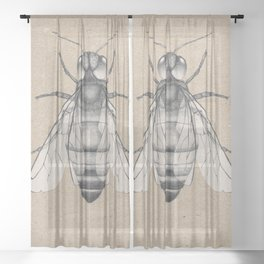 Bee pencil drawing Sheer Curtain