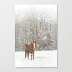Western Winter Wonderland Canvas Print