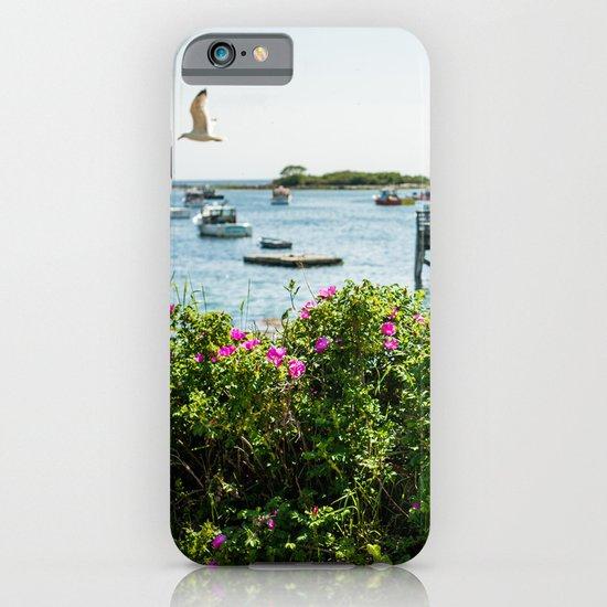 Rosa rugosa (Beach Rose) iPhone & iPod Case