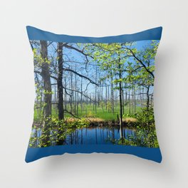 Towne Creek Throw Pillow