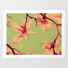 Magnolipop Art Print
