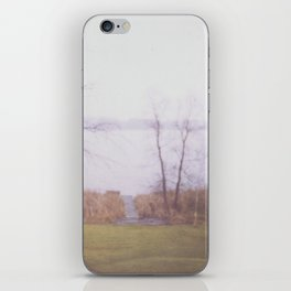 Wintry Lake iPhone Skin