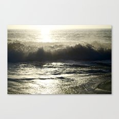 Splash! Canvas Print