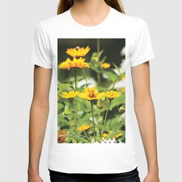 Yellow daisies on dark background PF03 T-shirt