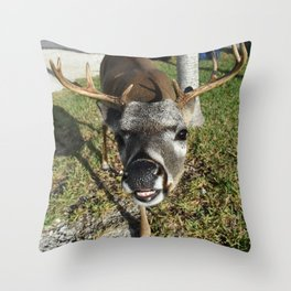 Smiling Key Deer Throw Pillow