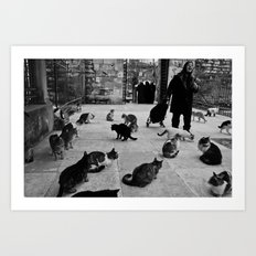 Some cats in Istanbul Art Print