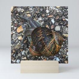 Snail camouflage Mini Art Print
