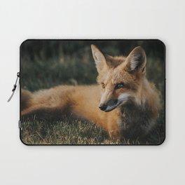 Beautiful fox Laptop Sleeve