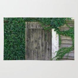 The door_3 Rug