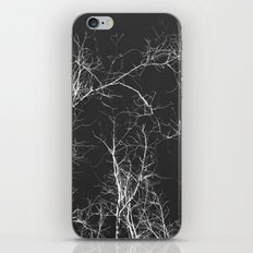 Branches and Sky iPhone & iPod Skin