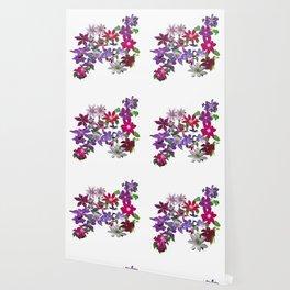 Cascade of Clematis Wallpaper