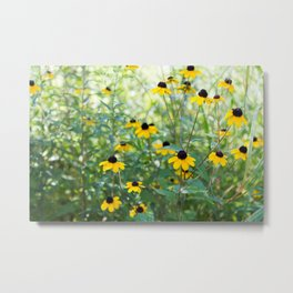 August Mornings Metal Print