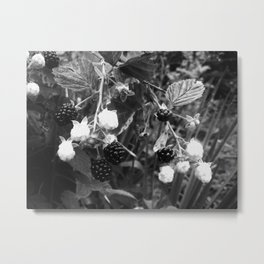 Duality at Work--Black and White Photography Prints Metal Print