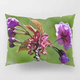 Pink Blossoms of Spring Pillow Sham