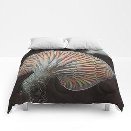 New Life Comforters