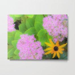 Succulent Hot Pink Sedum and Yellow Rudbeckia Metal Print