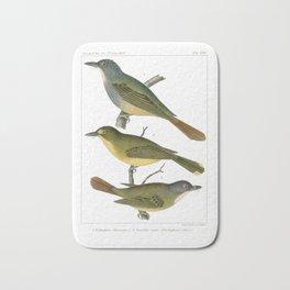 Antique color print three birds Wall Art Bath Mat