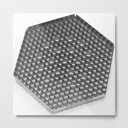 NPP Spacer Grid Metal Print
