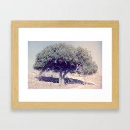 Dentro Framed Art Print