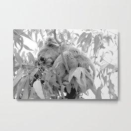 NAPTIME Metal Print