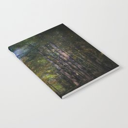 Magical Moonlit Forest Notebook