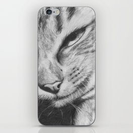 Pencil Drawing of Mr Cat iPhone Skin