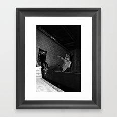 Skating Frontside Fox Framed Art Print