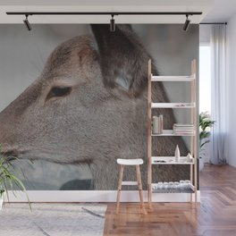 horse by Samuel Sng Wall Mural